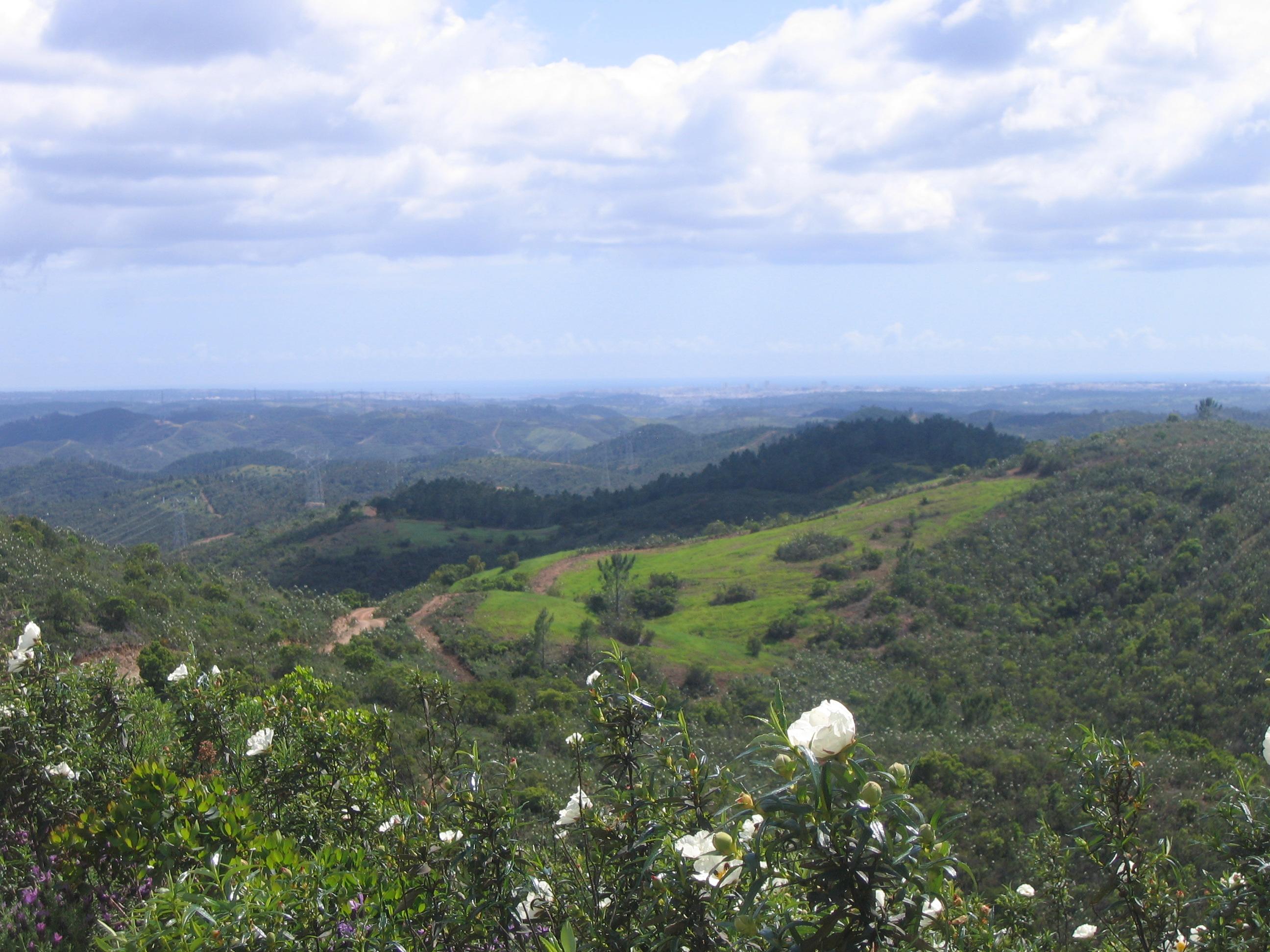 Countryside around Portimao